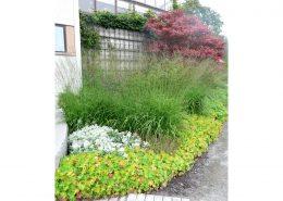 ronneberga_plantering